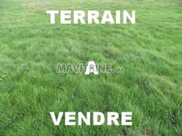 Terrain agricole de 27500m2 à Mohammedia