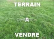 Photo de l'annonce: Terrain agricole de 27500m2 à Mohammedia