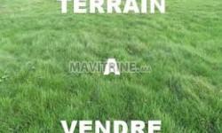 Terrain Agricole de 3 Hectares et 400m2