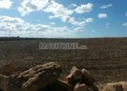 Photo de l'annonce: أرض تيتر للبيع 1.2 هكتار و 2000 متر مربع