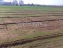 Photo de l'Annonce: terrain agricole irrigué et titré