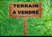 Photo de l'annonce: Terrain Vendre  ارض زراعية 100% متوفرة على رخصة للسكن