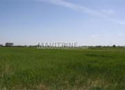 Photo de l'annonce: Terrain agricole de 180000 m²