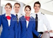 Photo de l'annonce: Hôtesse de l'air / (Steward)
