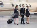 Photo de l'Annonce: Hôtesse de l'air steward