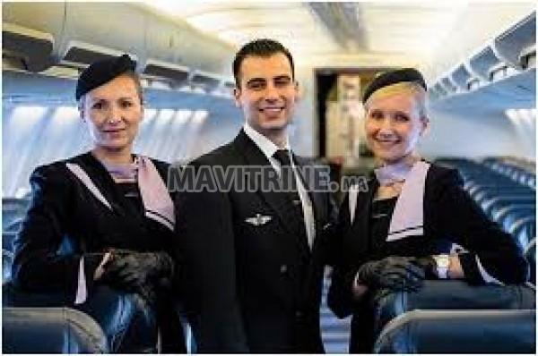 Hôtesse de l'air (steward)