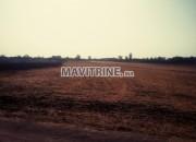 Photo de l'annonce: Terrain à vendre de 8880 metr