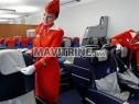 Photo de l'Annonce: Hotesse de l'air