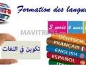 Photo de l'Annonce: formation des langues
