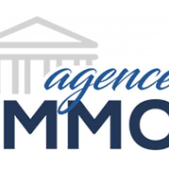Logo du Vitrine: ABJ IMMO