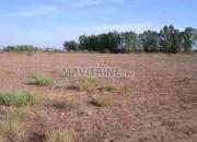 Photo de l'annonce: Terrain à vendre route de fès km 25