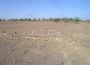 Photo de l'annonce: Terrain à vendre proximité de la plage rouge