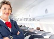 Photo de l'annonce: Hôtesse de l'air (steward)