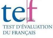 Photo de l'annonce: Préparation du TEF (Canada ou Québec)