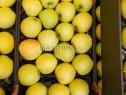 Photo de l'Annonce: Pomme