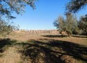 Photo de l'annonce: Terrain de 9900 m² à vendre km 15 route de fez Marrakech