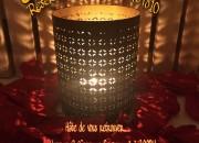 Photo de l'annonce: Promo du Noel chez votre SPA