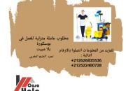 Photo de l'annonce: مطلوب عاملة منزلية تجيد الطبخ المغربي للعمل في بوسكورة
