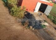 Photo de l'annonce: HANGAR PRES DE BVD 300/M  4000 DH TTC