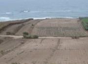 Photo de l'annonce: Je mets en vente des terrains au bord de mer zone touristique