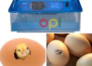 Photo de l'annonce: L'incubateur offre la possibilité d'éclosions élevé