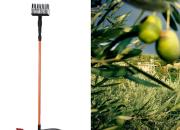 Photo de l'annonce: Vibreur indispensable pour la récolte d'olives